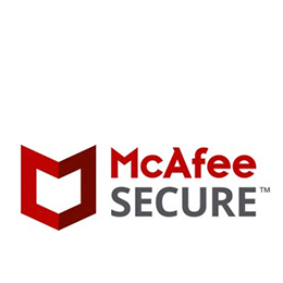 256-byte encryption McAfee Secure transactions