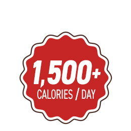 This kit provides one person food with over 1,500 calories per day
