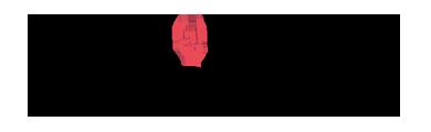 Pro Tour Logo