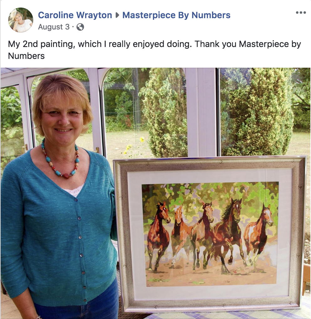 Paint By Numbers - Facebook - Raging Horses