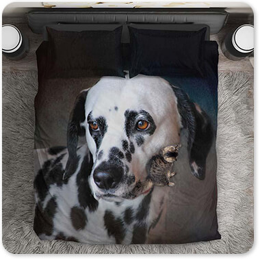 Dogs Collection The Firemans Dog Dalmatian - Bedding Set