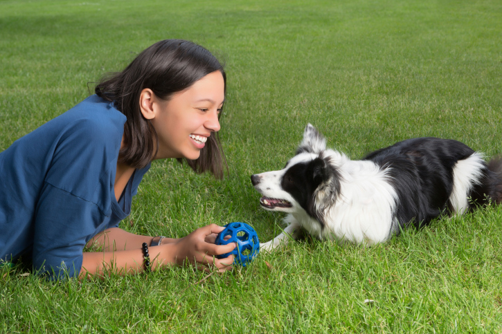 3 Games to Strengthen the Bond with Your Dog