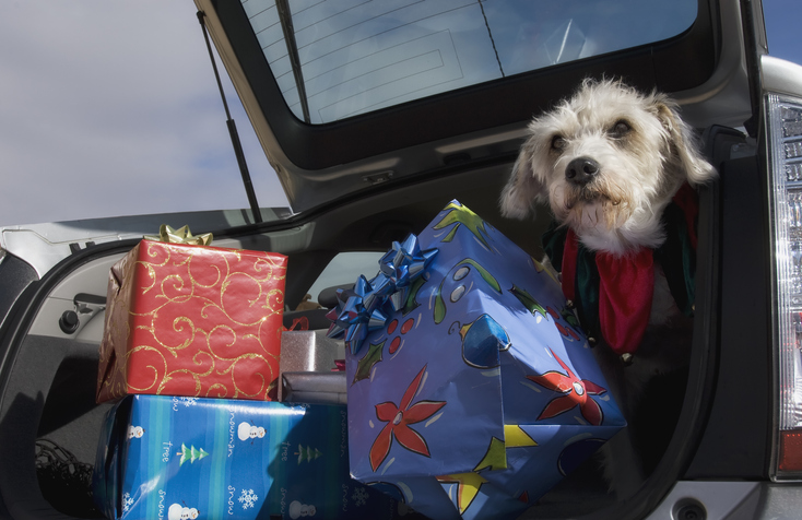 How to Keep You Dog Safe While Traveling for the Holidays