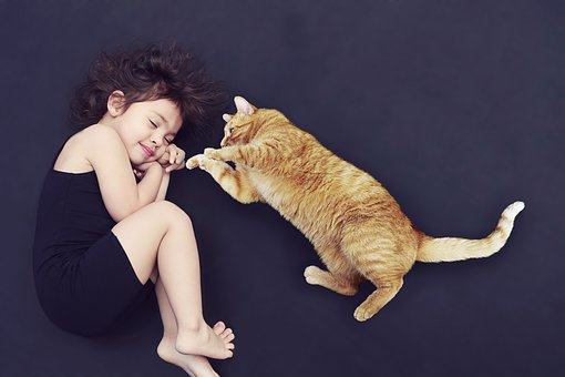 Kind Katze streicheln spielen