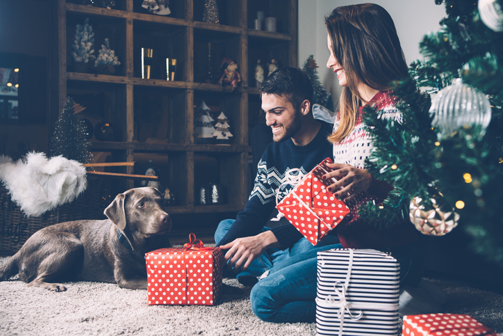 7 Trendy and Unique Gift Ideas for Pet Lovers This Christmas