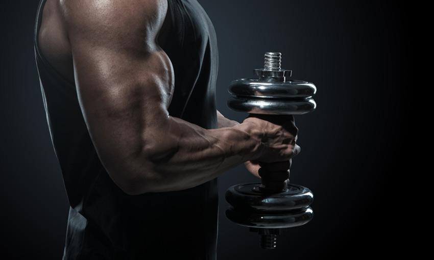 shoulder dumbbell exercises