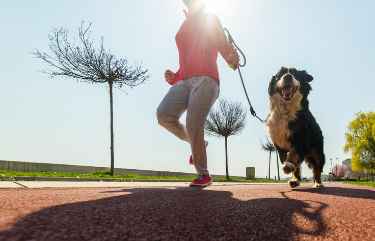 Start 2019 off RUNNING right WITH your DOG